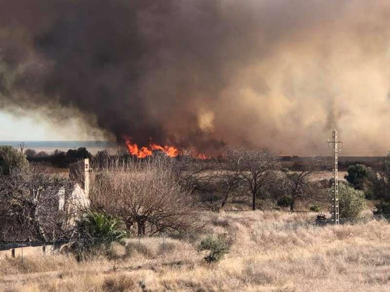 Incendio de la Marjal dels Moros en Sagunt. EPDA
