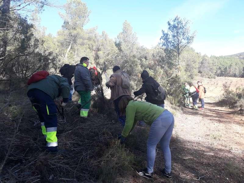 Voluntarios limpiando el monte