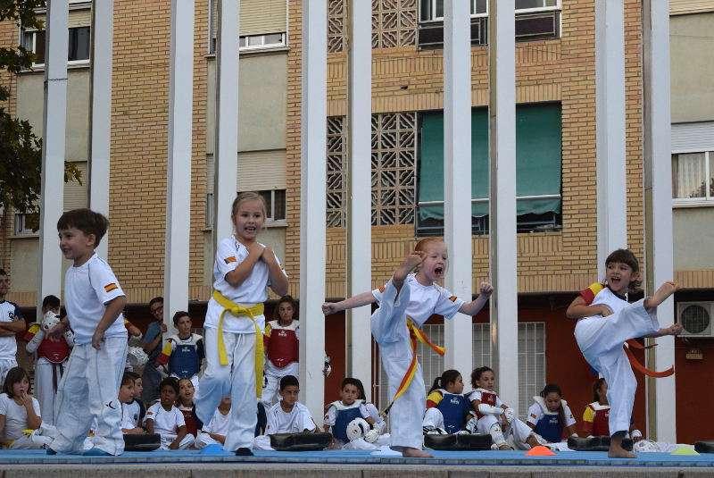 Club Deportivo Olimpo de Taekwondo de Sedaví. EPDA