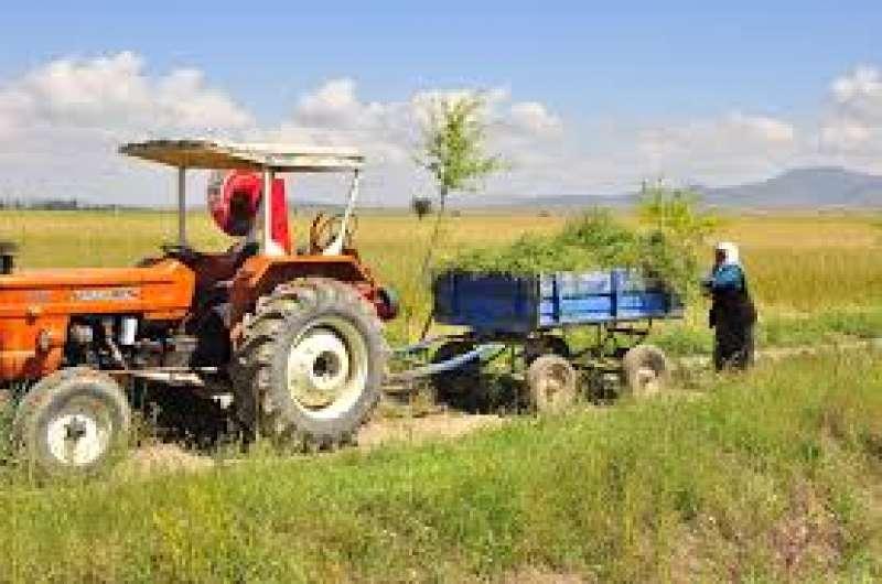 Mujer en labores rurales. EPDA