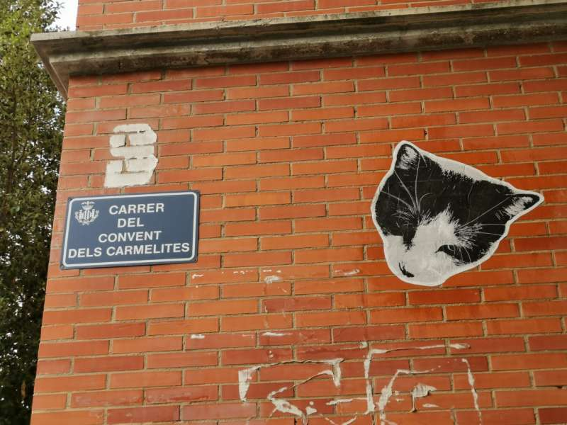 Una calle para el gato. B. BUENO