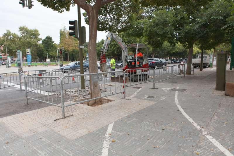 Carril ciclista avenida Chatellerault, Castelló./ EPDA