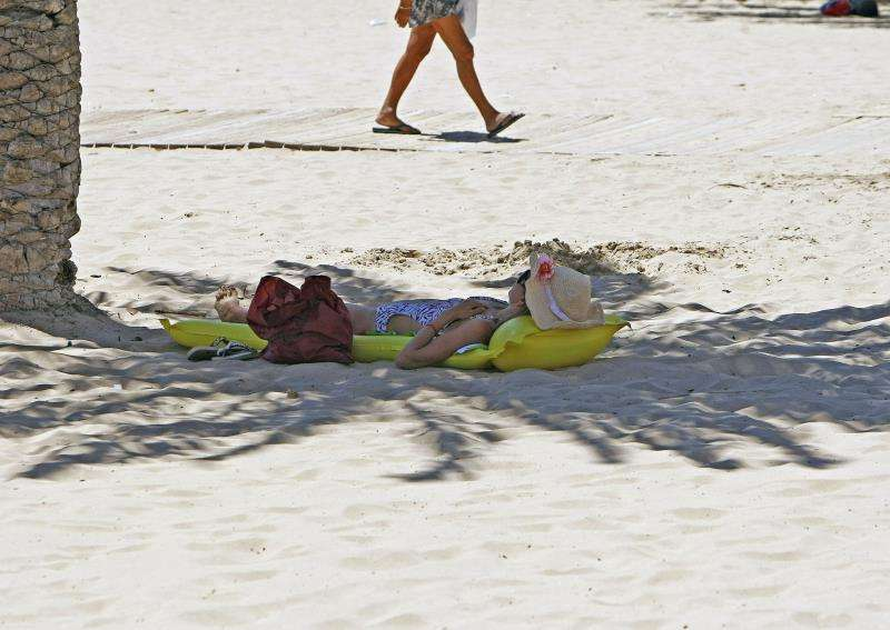 Una mujer tumbada bajo la sombra de una palmera en una playa de Alicante. EFE/Archivo