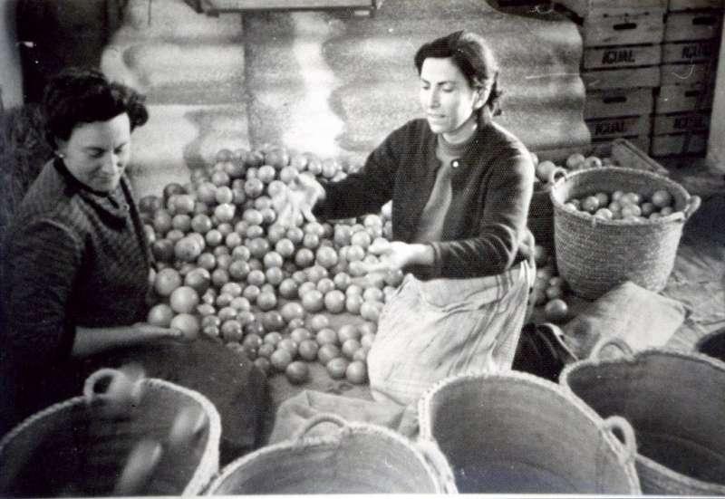 Dones treballant en un magatzem de taronja del poble de Quartell. EPDA