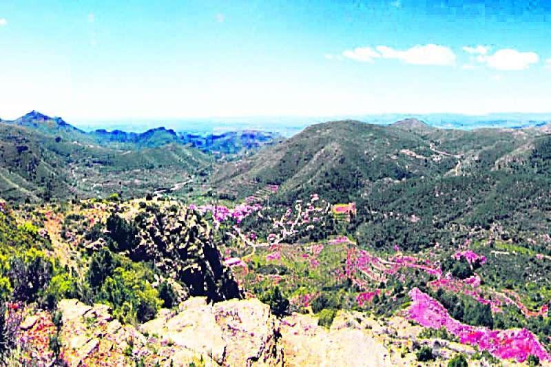 Imagen de la Sierra Calderona. EPDA
