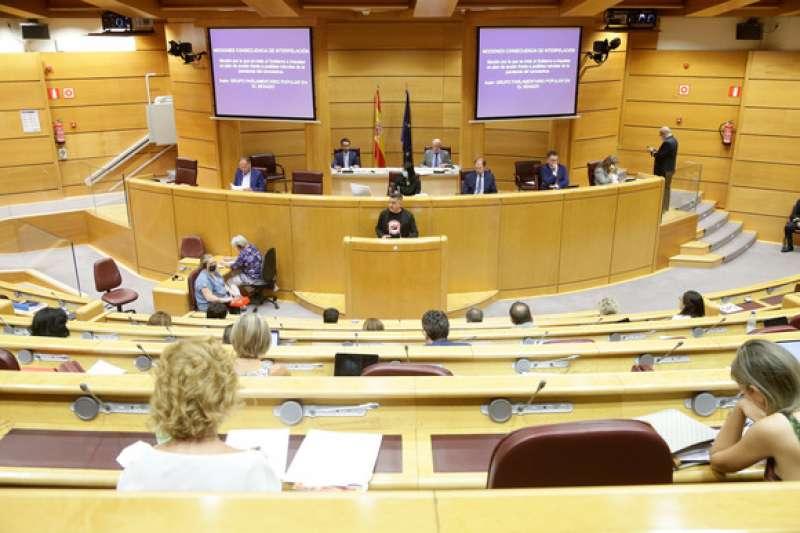 Mulet en el Senado. EPDA