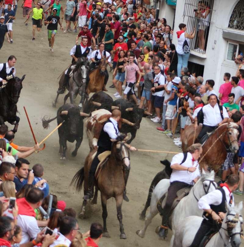 Los tres toros rezagados con el manso tras el jinete Guzmán