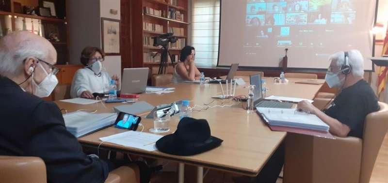 Imagen cedida por el CVC de la sesión plenaria telemática. EFE