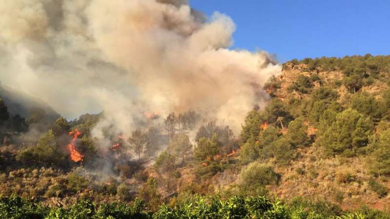 Incendio en el término de Benifairó de les Valls. EPDA