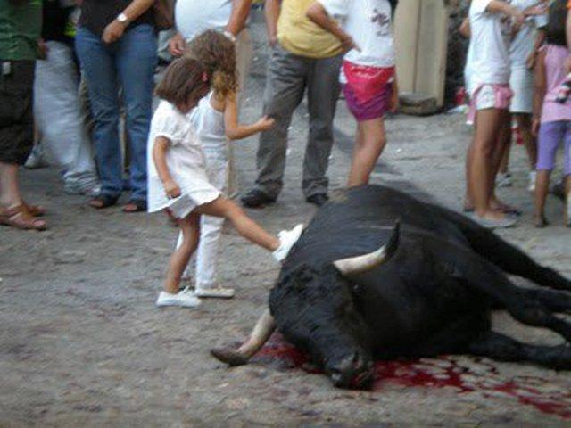 Xiquets amb un bou. FOTO: EPDA