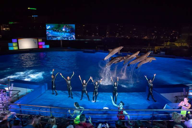 Equipo de delfinario en las Noches del Oceanogràfic.