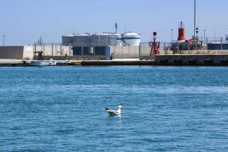 Imagen del Puerto de València. EPDA