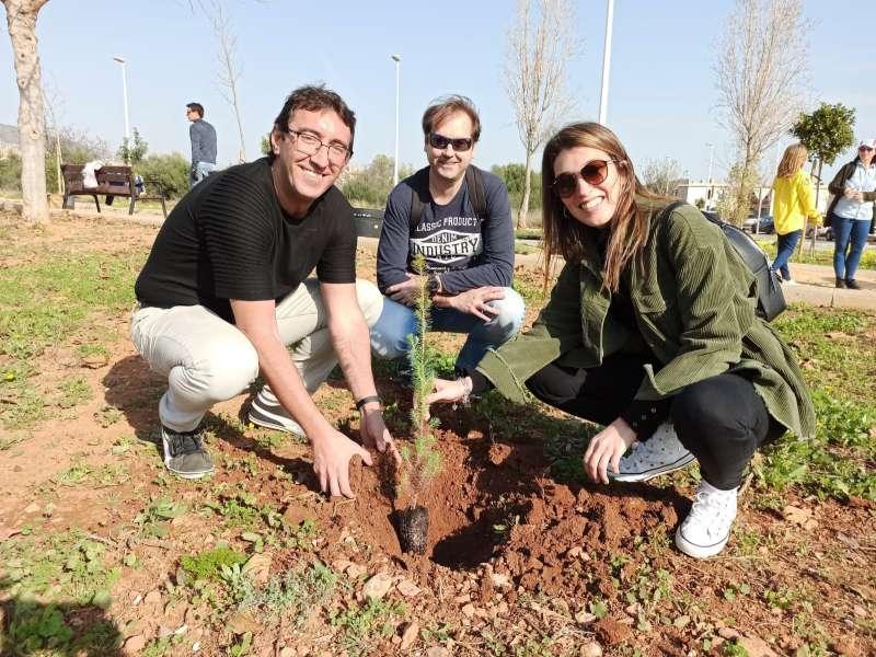 Foto de archivo de la plantación del año pasado / EPDA