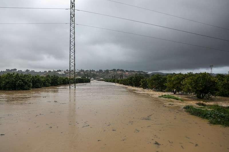 Una zona inundada como consecuencia de la borrasca Gloria a su paso por la Comunitat Valenciana. EFE