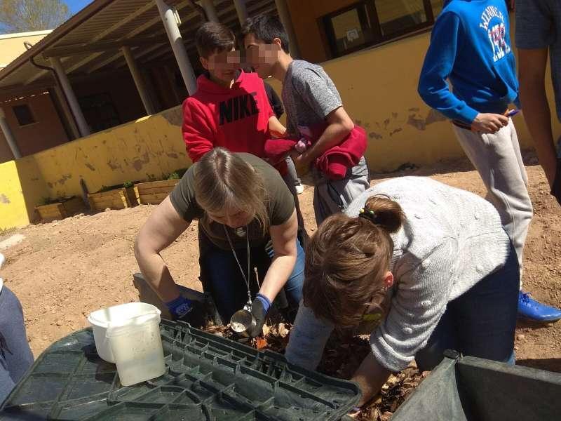 Escolares participando en programas medioambientales. / EPDA