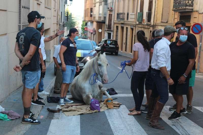 No había forma de levantar al caballo