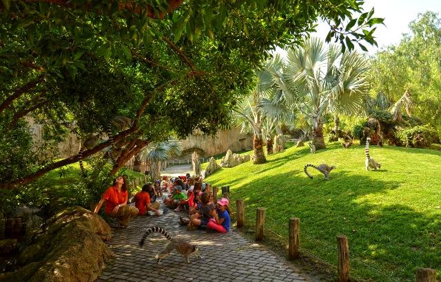 Enriquecimiento ambiental de lémures. FOTO: EPDA