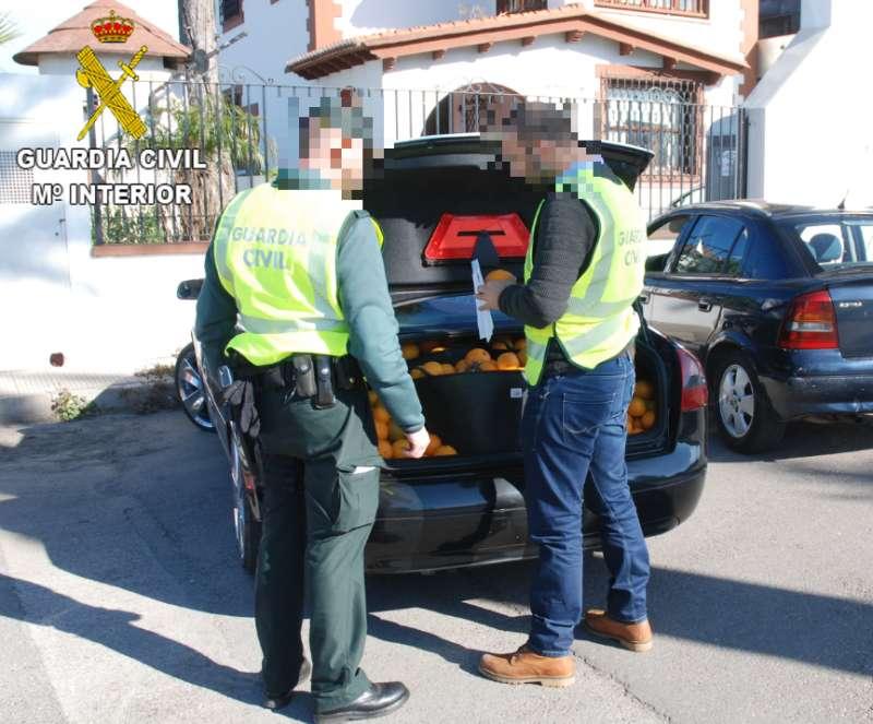 La Guardia Civil con las naranjas incautadas. EPDA