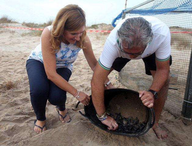Salomé Pradas durante la suelta de tortugas. FOTO: GVA