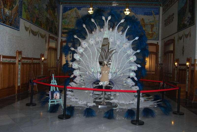 Imagen del traje de carnaval expuesto en la estación