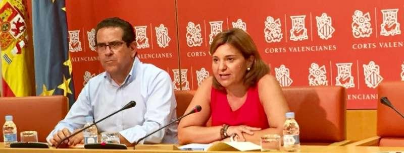 La portavoz del Grupo Parlamentario Popular (GPP), Isabel Bonig.
