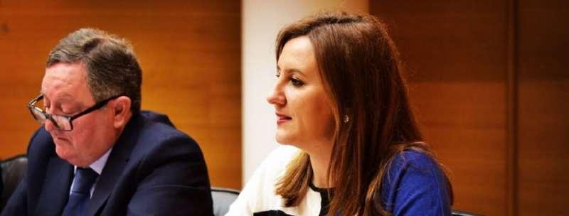 La portavoz adjunta del Grupo Parlamentario Popular en Les Corts Mª José Català