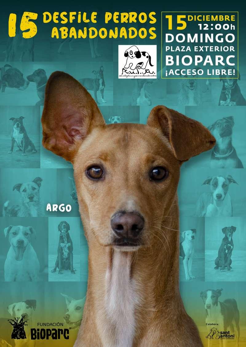 Cartel desfile de perros abandonados AUPA - Diciembre 2019 -EPDA