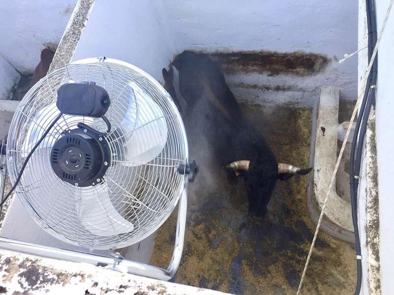 Sistema de refrigeración de los toriles. EPDA