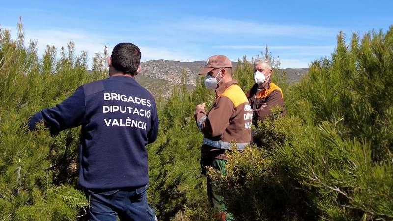 Las brigadas forestales de la Diputació de València. EPDA