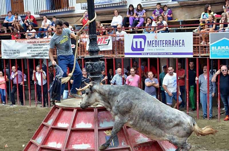 Los aficionados disfrutaron del concurso. Foto: Berta