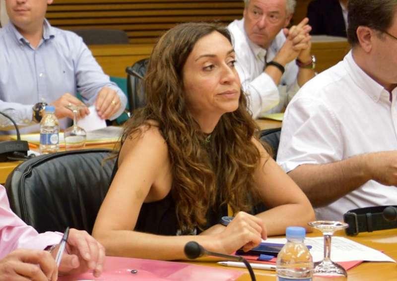 La diputada de Compromís en Les Corts i portaveu de la Comissió de Sanitat, Isaura Navarro