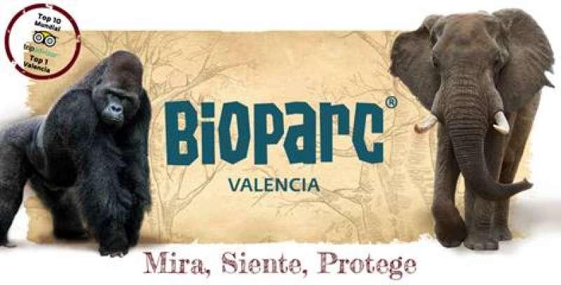 Nueva campaña Bioparc.  BIOPARC VALÈNCIA
