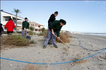 Alumnos trabajando en la repoblación dunar de la playa de Puçol. EPDA