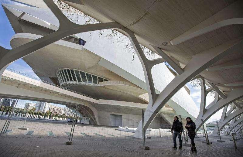 Una parte de la Ciudad de las Artes y las Ciencias (CACSA). EFE/Archivo