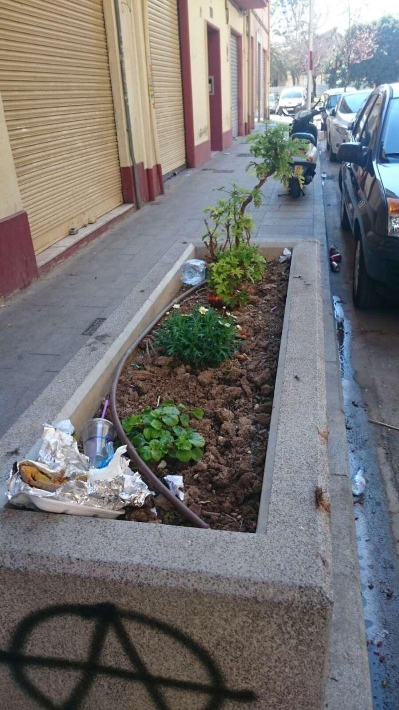 Jardinera en la calle Pintor Gisbert. FOTO EPDA
