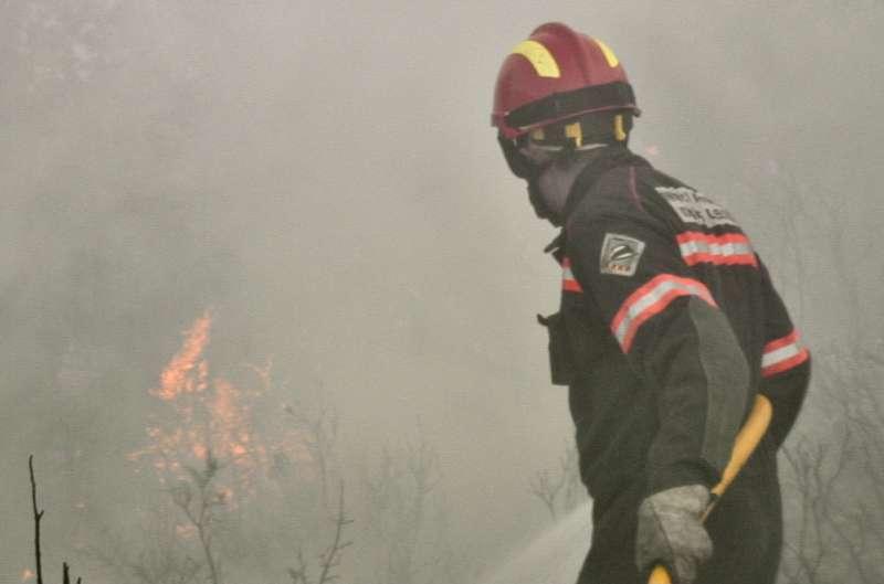 El fuego afectó principalmente a las cañas