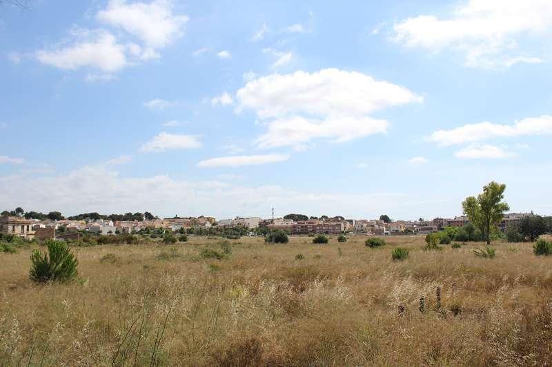 Zona verda del Bovalar de Godella. EPDA