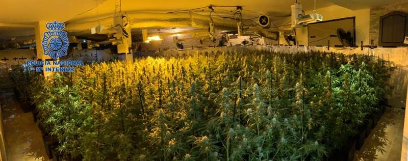 Marihuana incautada. FOTO POLICIA