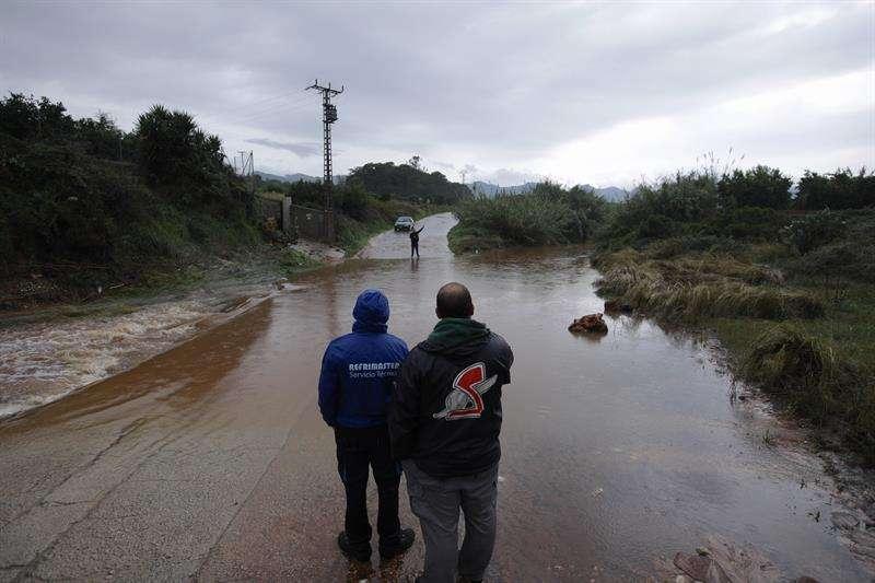 El camí de les bassetes en la zona de Marxuquera del término de Palma de Gandia permanece cortado debido a las fuertes lluvias. EFE