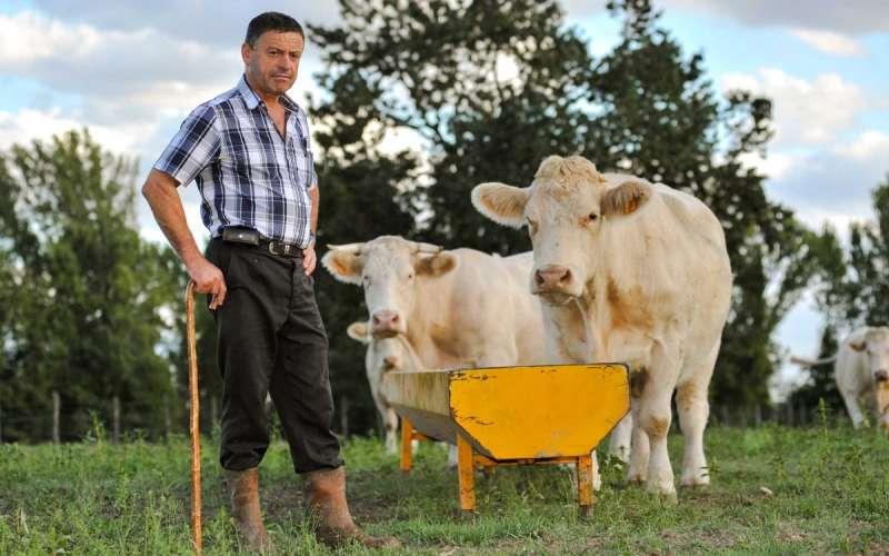 AVA-ASAJA prioriza a los ganaderos