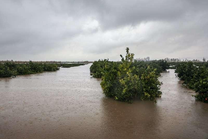 Un campo inundado en el municipio de Alberic (Valencia) durante el último temporal. EFE/Archivo