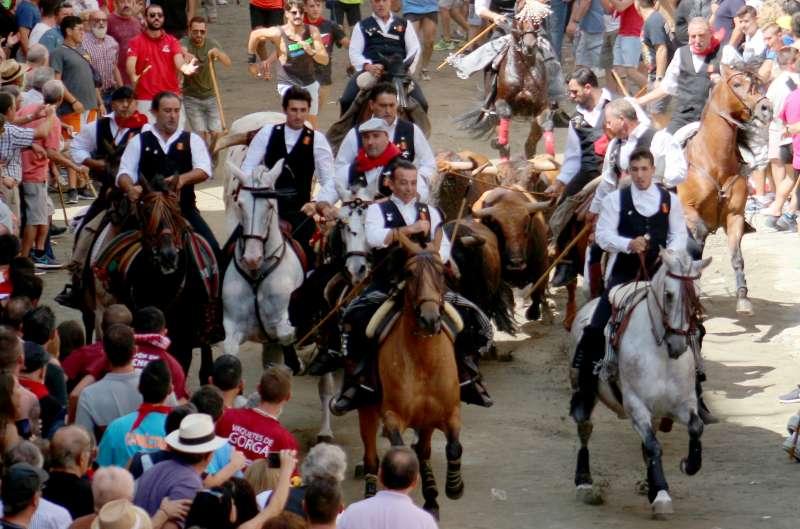Los toros perfectamente arropados por los caballos