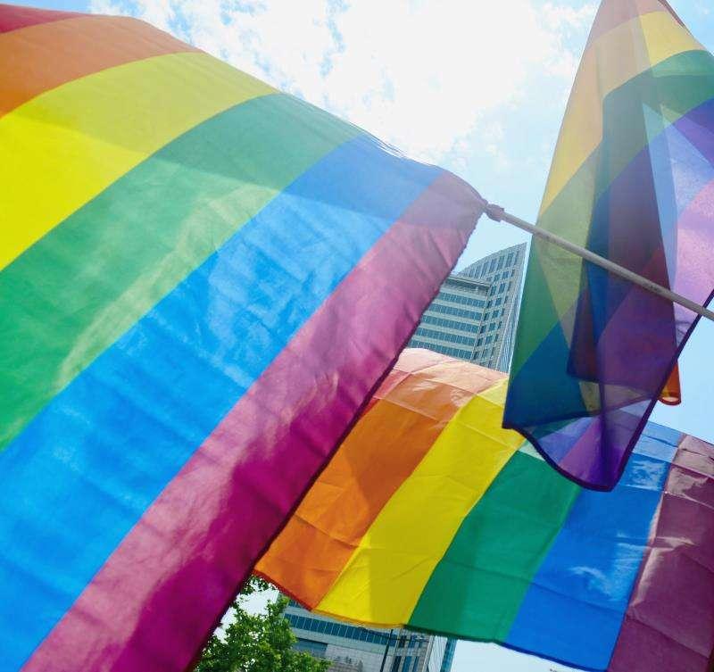 Banderas LGTBI. EFE/Archivo