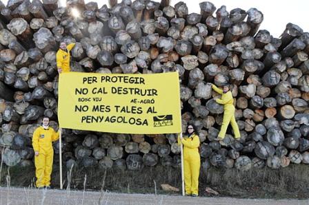 <TEXTAREA onblur=guarda_pie(2) id=piorden2 name=piorden2>Actos de protesta en Penyagolosa por la tala masiva de pinos. Foto Bosc Viu</TEXTAREA>