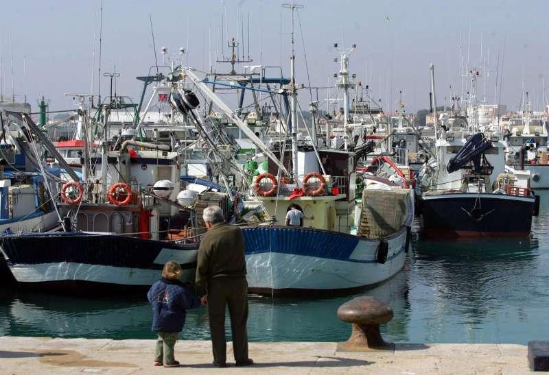 Imagen de la flota pesquera del puerto de Vinarós.