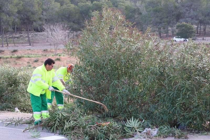 Trabajadores municipales en Torrent. EPDA