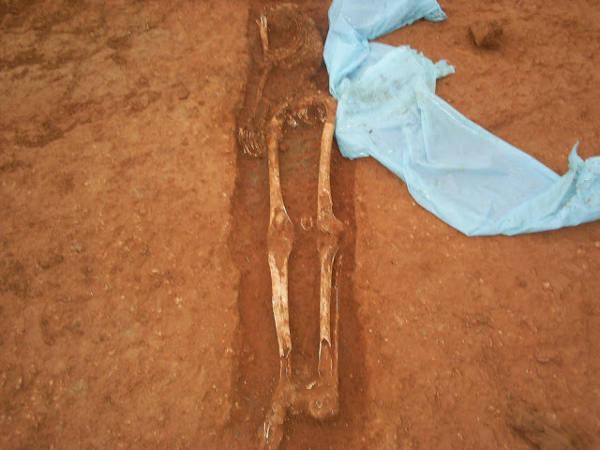 Cata arqueológica. EPDA