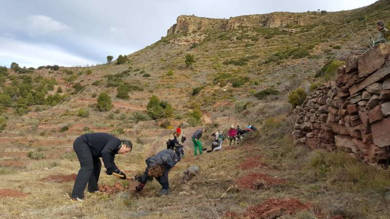 Gátova aplaza al 25 de febrero la segunda parte del Día del Árbol