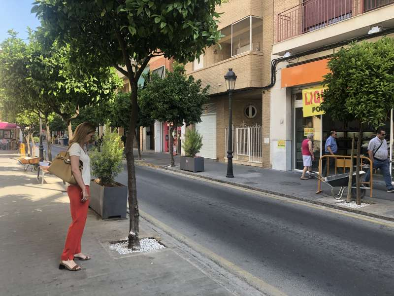 Relleno alcorques Calle Mayor Paterna. epda