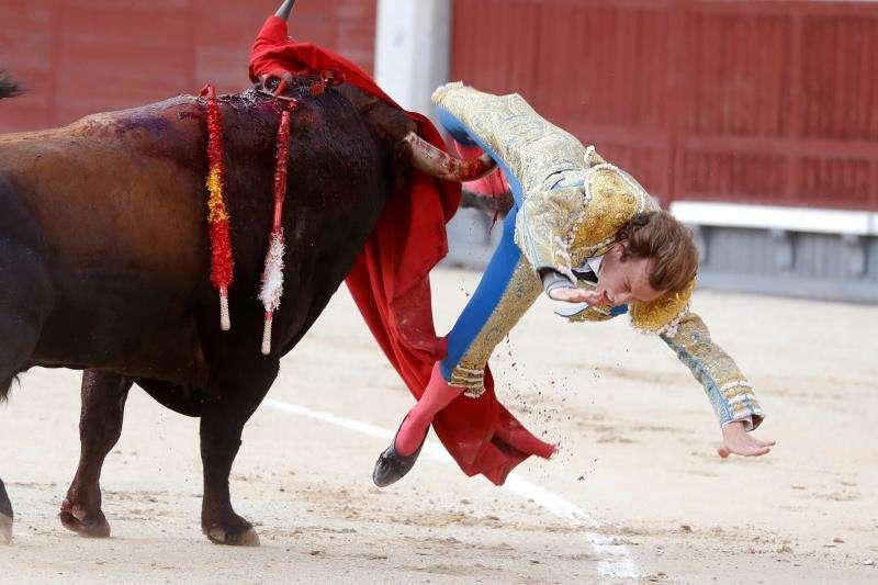 Cogida del diestro valenciano Román Collado en la plaza de toros de Las Ventas el pasado 9 de junio. EFE/Archivo